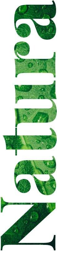 Eco Tatry